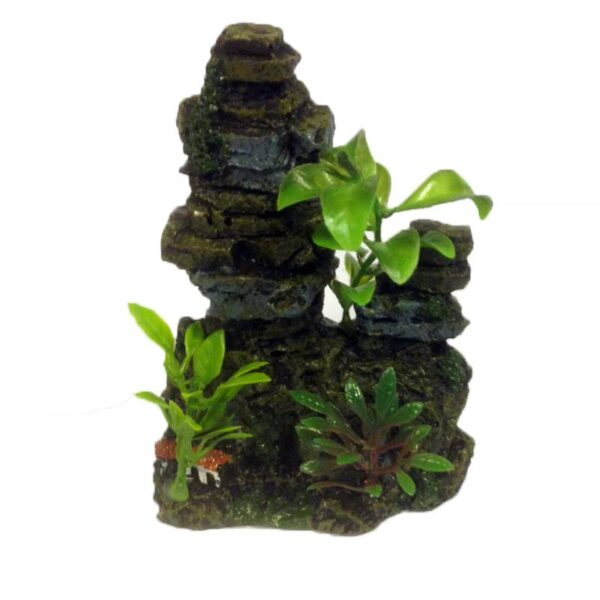 műszikla és növények
