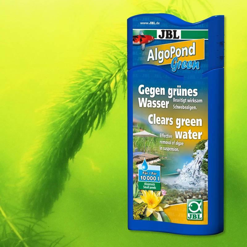 Kerti tó zöldalgairtó