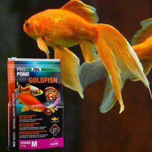 jbl propond goldfish komplett aranyhal táp