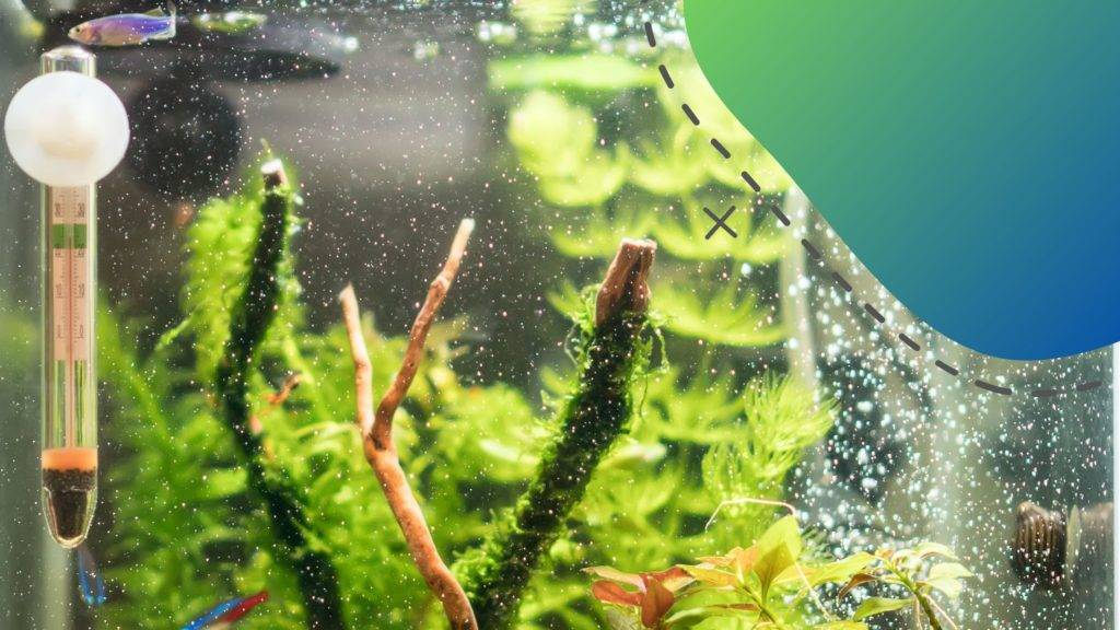 MElyik akvárium fűtő a legideálisabb