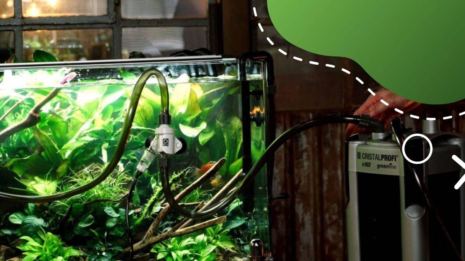 ideális akváriumi szűrők