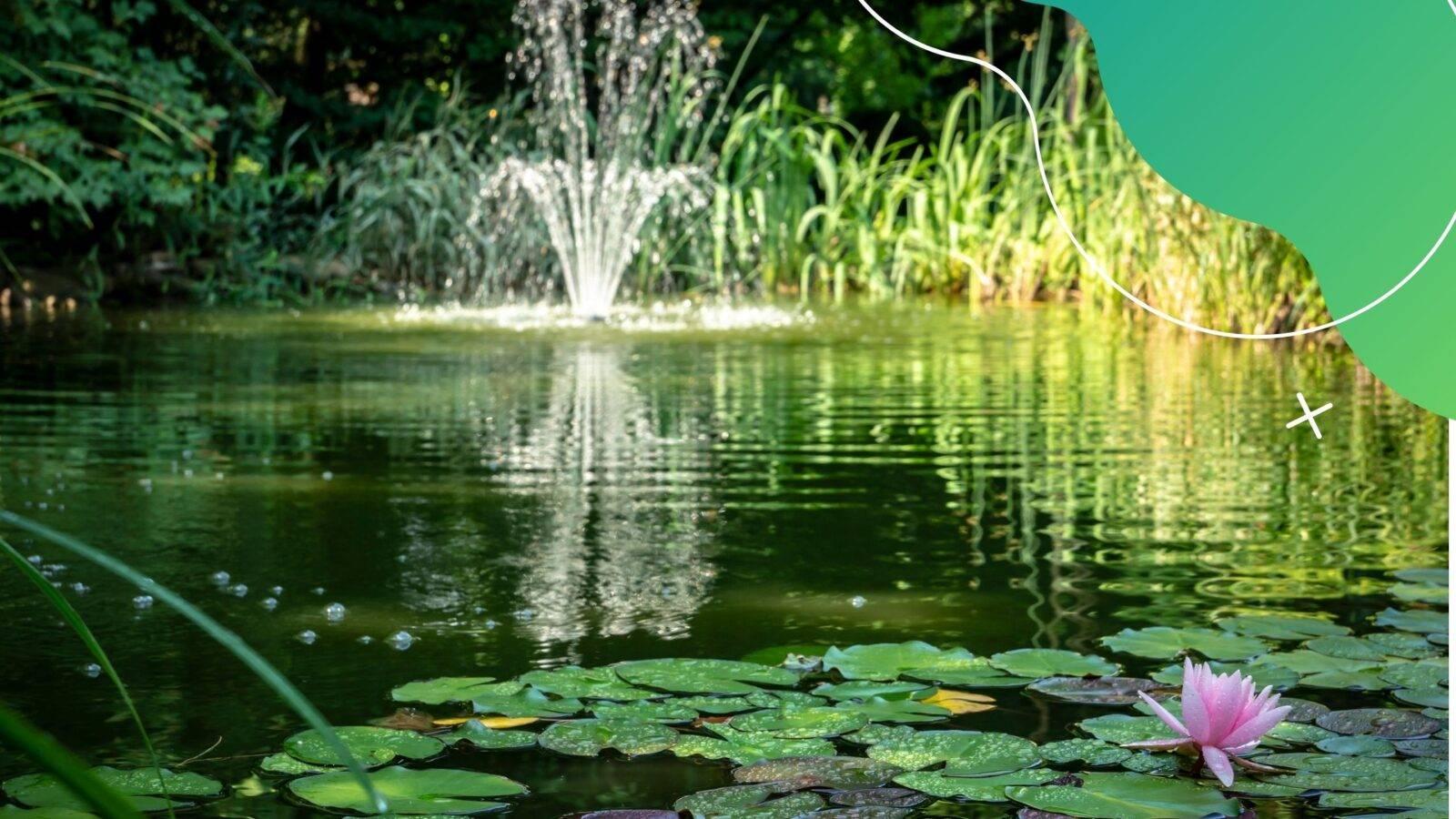 Hogyan válasszunk kerti tavi szivattyút?