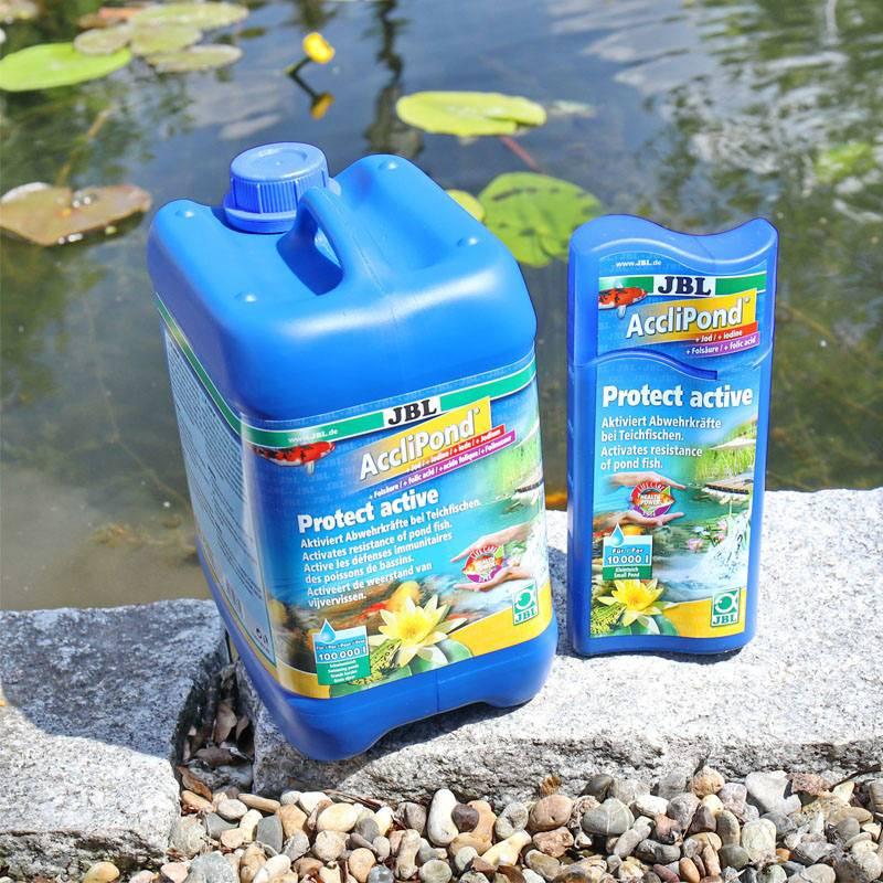 Immunrendszer erősítő kerti tavi halaknak