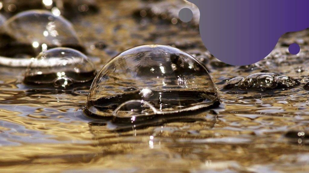 miért habzik a kerti tavunk vize