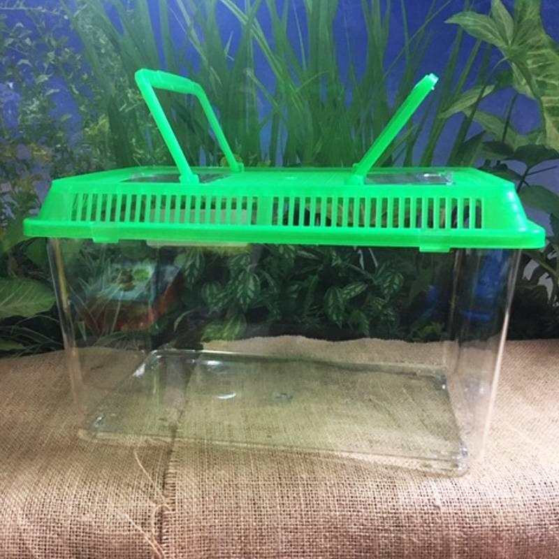 Hordozható műanyag terrárium, akvárium