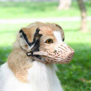 Műanyag szájkosár kutyának
