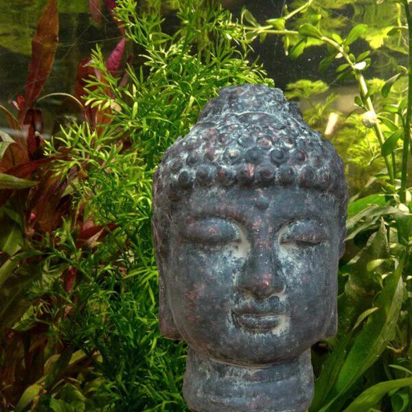 Buddha fej akvárium dekoráció