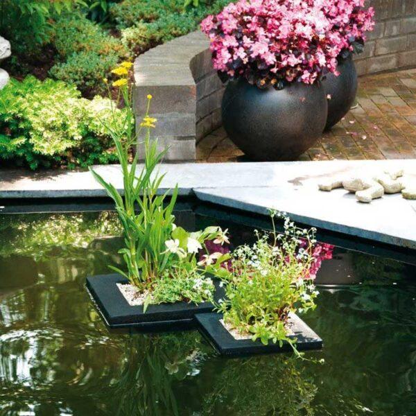 velda lebegő vizinövény ültető kosár szögletes