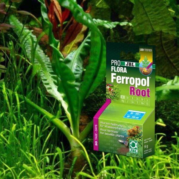 jbl ferropol root növénytáp tabletta